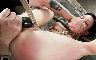 Master makes immobilized slave Elise Graves cum countless times