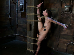 Flexible Sensi Pearl is buzzed to orgasm in wicked rope bondage