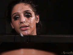 Abella Danger survives unholy BDSM mouth fuck and doggystyle session
