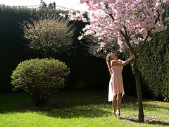 Dazzling Angel Piaff meets her lover under blossoming cherry tree